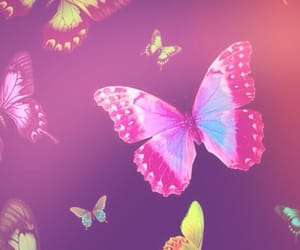 mariposas, patron, and fondos image