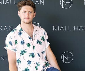 aesthetic, photography, and niall horan image