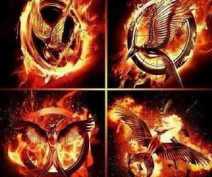 mocking jay, gale hawthorne, and hunger games image