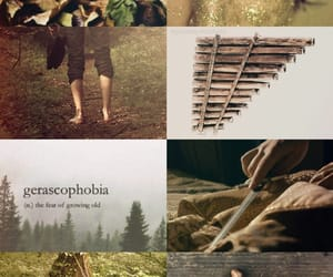 aesthetic, forest, and peter pan image