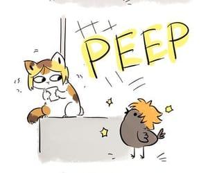 funny, kenma kozume, and hinata shojo image