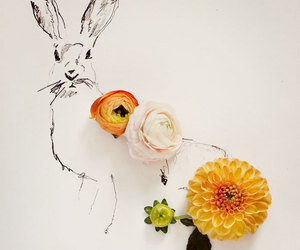 background, bunny, and drawing image