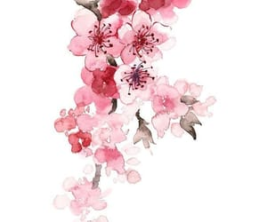 pink, sakura, and art image