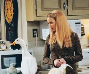 friends, phoebe buffay, and duck image