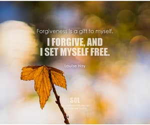 forgive, forgiveness, and inspirational words image