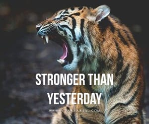 change, quote, and strong image