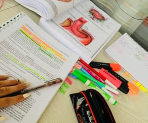 anatomy, candy, and exams image