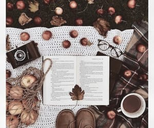 I'm ready for cozy seasons & sweater weather. Love the fall vibe in this picture 🍂🍁🧡