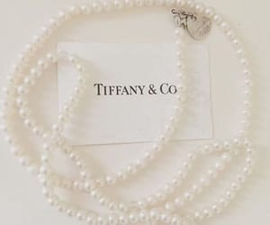 classy, fancy, and necklace image