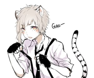 anime, cute, and bungou stray dogs image