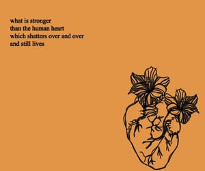 book, heart, and quotes image