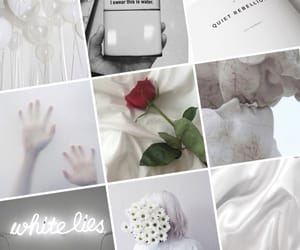 aesthetics, rose, and grid image