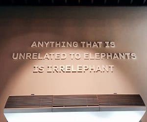 elephant, hotel, and life image