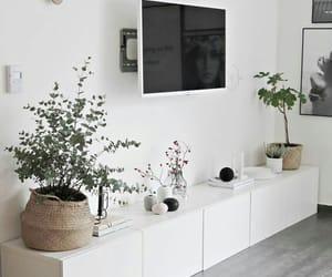 designer, home, and interior image