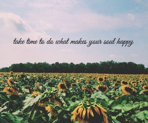 beautiful, flowers, and happiness image