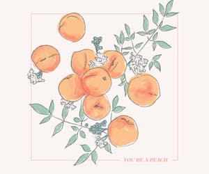 peach, art, and fruit image