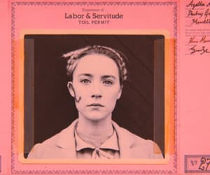 film and the grand budapest hotel image