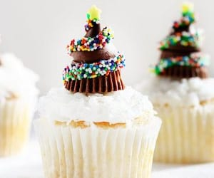 christmas, recipe, and vegetarian image