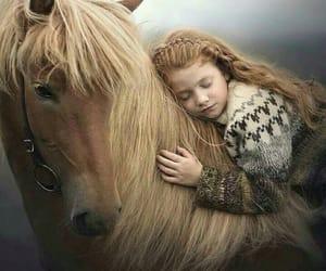 horse and minimalist image