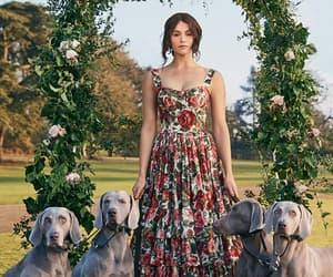 dogs, gemma arterton, and girl image