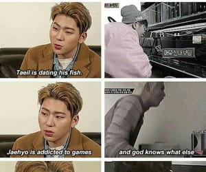 kpop, block b, and funny image