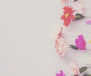 background, flowers, and pastel image