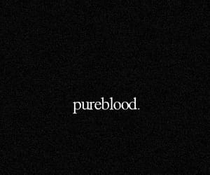 blood, books, and harrypotter image