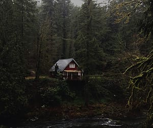 cabin, cold, and photograph image