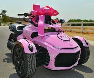 pink and canam image