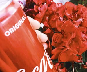 aesthetic, coca cola, and edit image