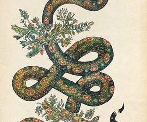 pattern and snake image