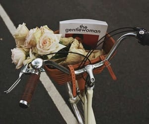 bicycle, book, and flowers image