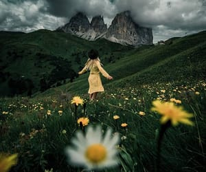 flowers, free, and freedom image