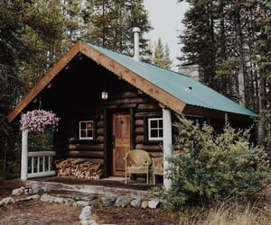 cabin, nature, and cute image