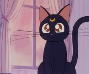 black cat, gif, and sailor moon image