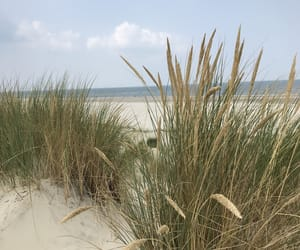 beach, blue sky, and germany image