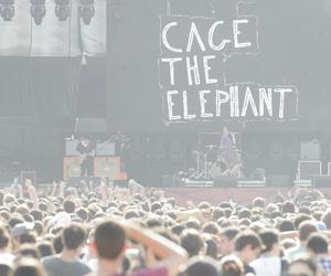 cage the elephant, concert, and music image