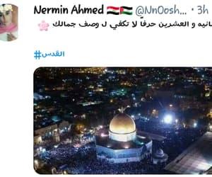 palestine, تويتر, and فلسطين image