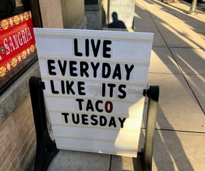 live, quotes, and tacos image
