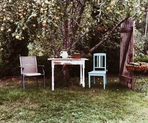 apples, autumn, and school image