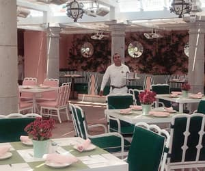 dinning, green, and pink image