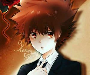 anime, tsunayoshi, and manga image