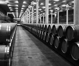 photo, vino, and pics image