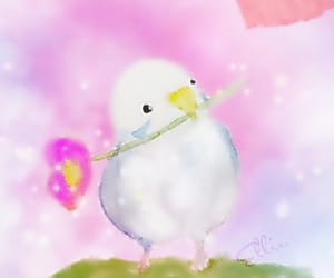 background, bird, and pink image