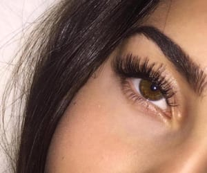 eyebrows, eyes, and lashes image