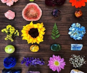 colors, crystals, and flowers image