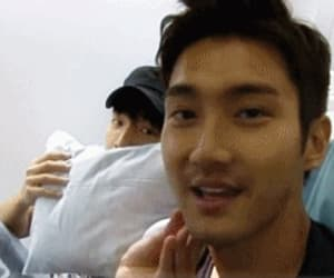 choi siwon, donghae, and gif image