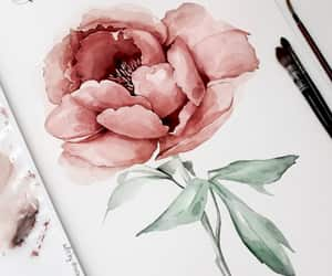 drawings and flower image