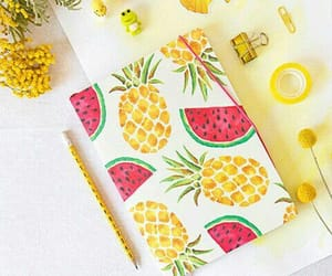 notebook, pineapple, and watermelon image