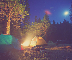 camping, night, and tree image